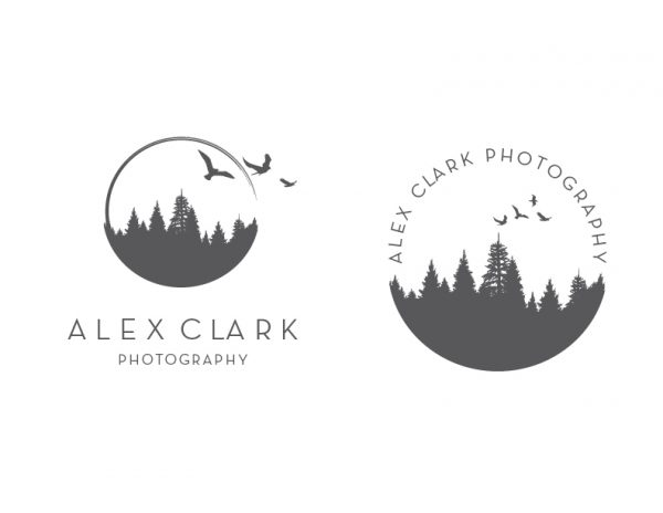 pine trees and birds lifestyle photographer logo